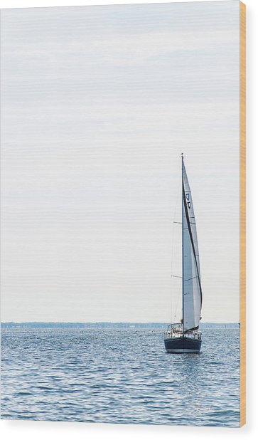 Sailboat Annapolis Wood Print