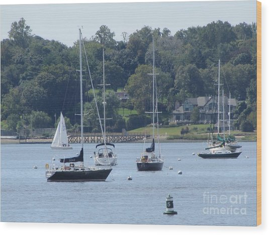 Sailboat Serenity Wood Print by Debbie Nester