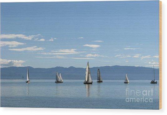 Sailboats In Blue Wood Print