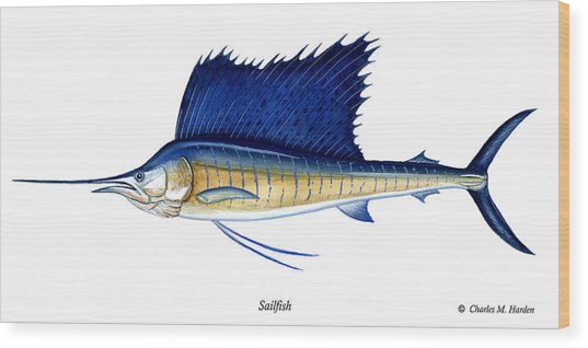 Sailfish Wood Print
