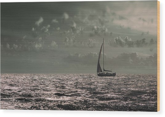 Sailing Wood Print by Akos Kozari
