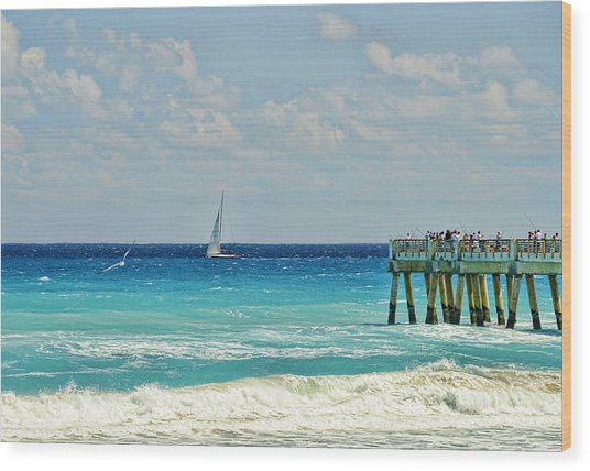 Sailing By The Pier Wood Print