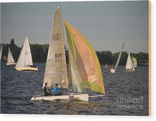 Sailing Dinghy At Stralsund Regatta Germany Wood Print by David Davies