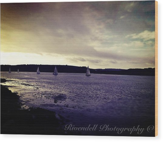 Sailing In Kinsale Wood Print by Maeve O Connell