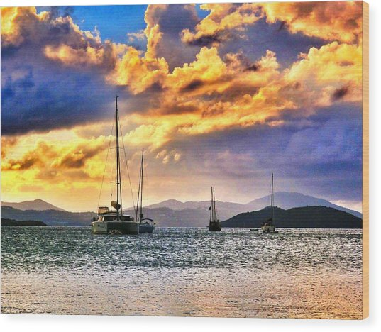 Sailing In The Sunset Wood Print by Emily Eisenberg