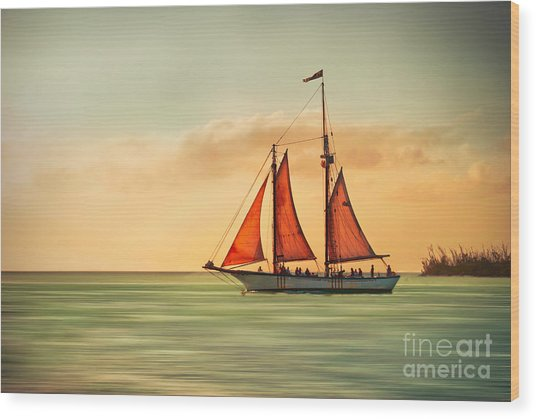 Sailing Into The Sun Wood Print