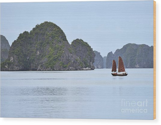 Sailing Junk Boats In Halong Bay Wood Print by Sami Sarkis