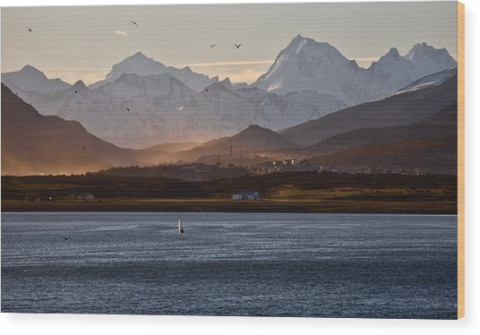 Sailing On The Beagle Channel Wood Print