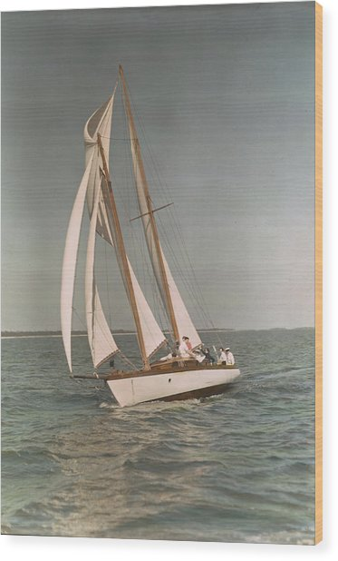 Sailing, One Of The Many Sports Wood Print by J. Baylor Roberts