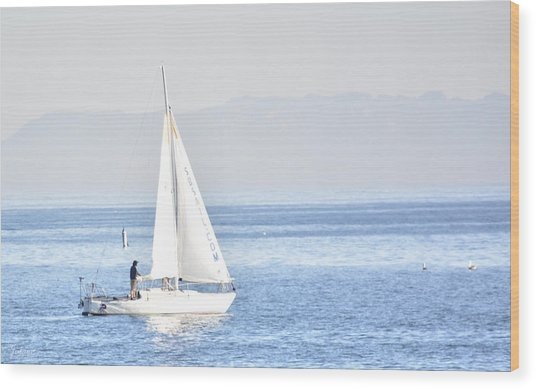 Sailing Peace Wood Print