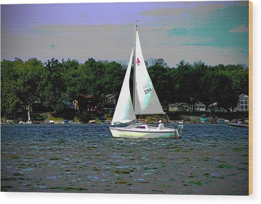 Sailing Wood Print by Thomas Fouch