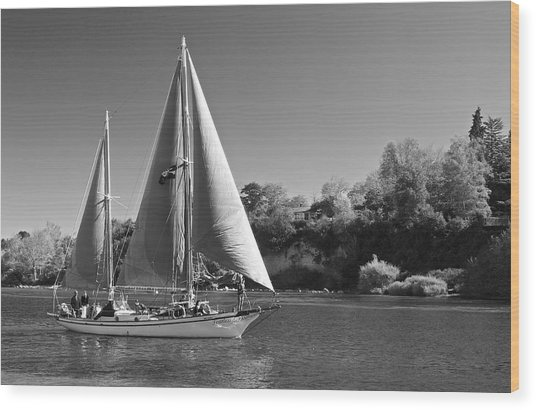The Fearless On Lake Taupo Wood Print