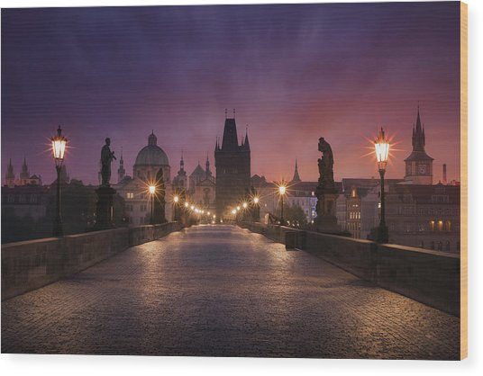 Saint Charles Bridge, Prague Wood Print by Inigo Cia