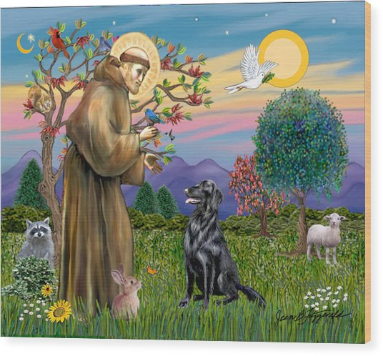 Saint Francis Blesses A Flat Coated Retriever Wood Print