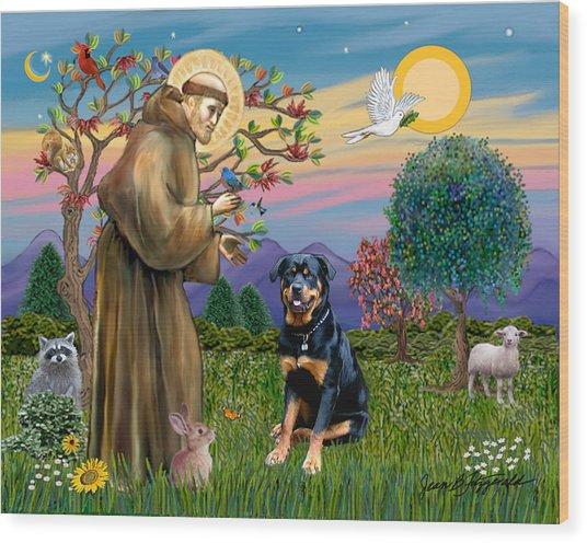 Saint Francis Blesses A Rottweiler Wood Print