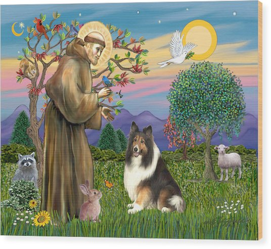 Saint Francis Blesses A Sable And White Collie Wood Print
