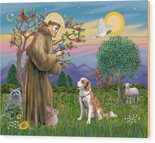Saint Francis Blesses A Welsh Springer Spaniel Wood Print