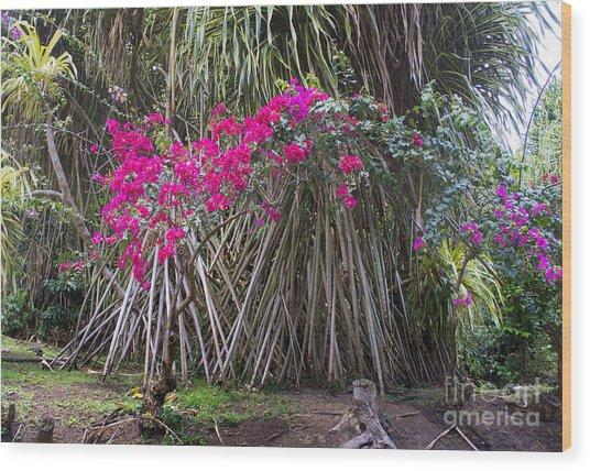 Saint Lucian Plantation Wood Print