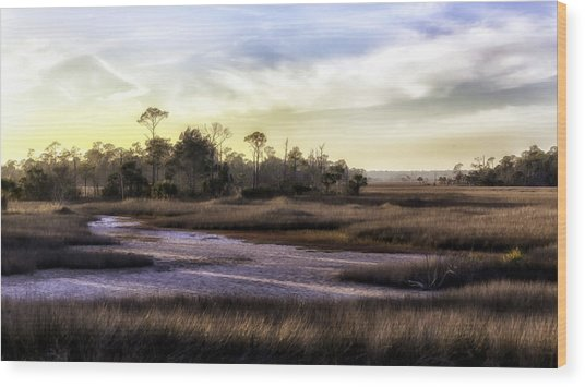 Saint Marks Wetland Sunset Wood Print