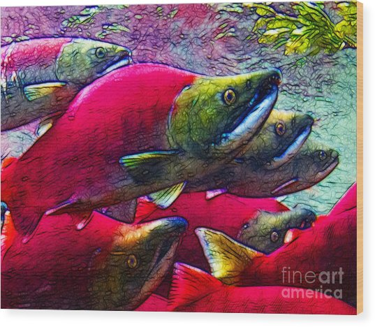 Salmon Run Wood Print by Wingsdomain Art and Photography