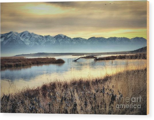 Salt Creek Bridge Wood Print