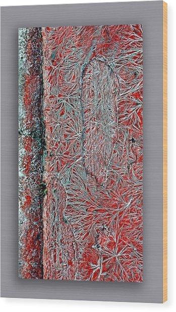 Salt Cystals Wood Print by Dennis Weiser