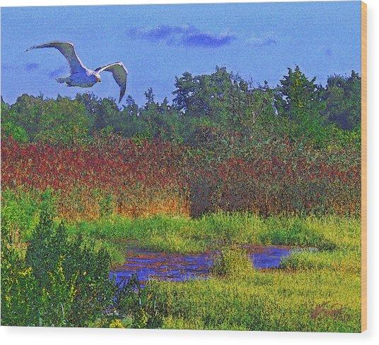 Salt Marsh Gull Wood Print