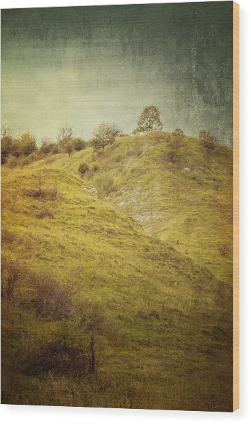 Salt Meadow Mounds Wood Print
