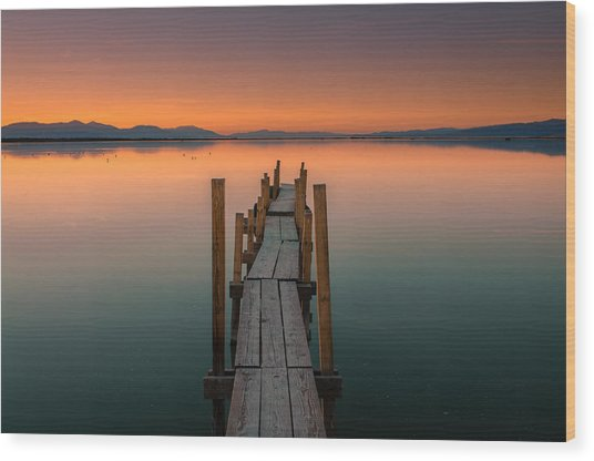 Salton Sea Dock Wood Print