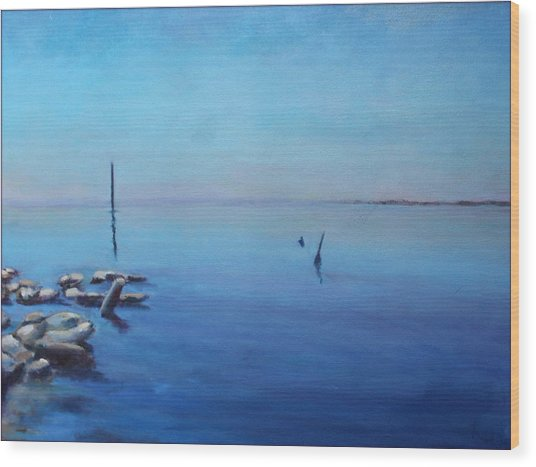 Salton Sea Wood Print