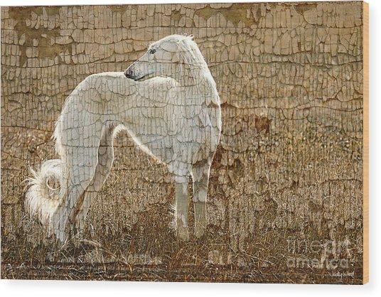 Saluki Texture Wood Print by Judy Wood