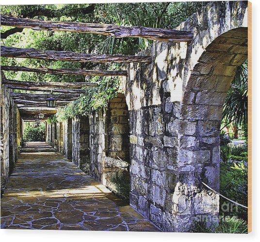 San Antonio C Wood Print