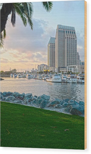 San Diego Beauty Wood Print by Andrew Kasten