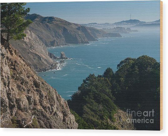 San Francisco Bay 2.2736 Wood Print by Stephen Parker