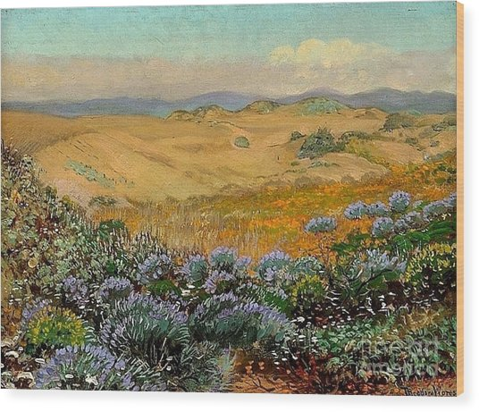 San Francisco Sand Dunes And Wildflowers Wood Print by Roberto Prusso