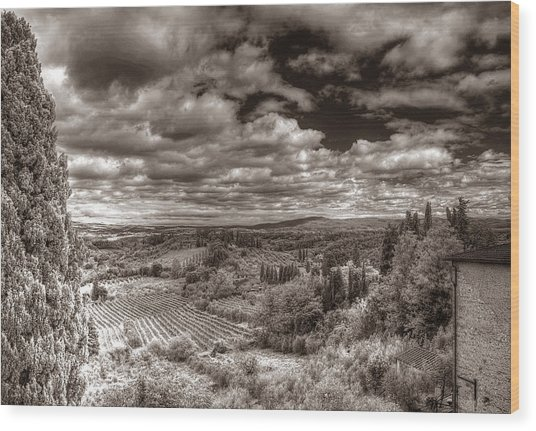 San Gimignano View Wood Print