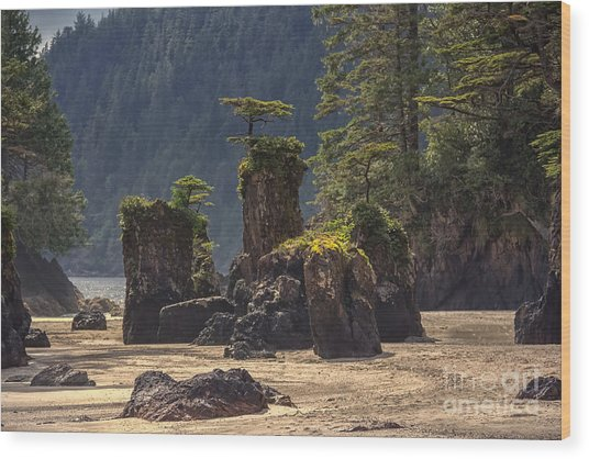 San Josef Bay Wood Print