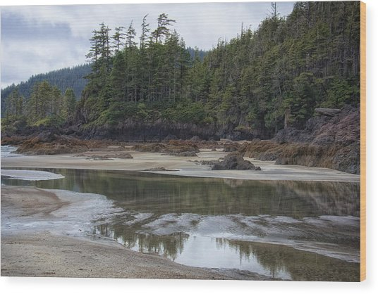 San Josef Bay Reflections Wood Print