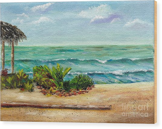 San Onofre Beach Wood Print