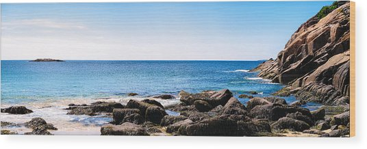 Sand Beach Rocky Shore   Wood Print