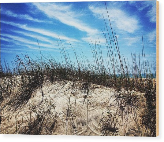Sand Dune At Alantic Beach Wood Print by Joan Meyland