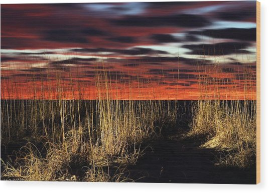 Sand Dune Sunrise Wood Print