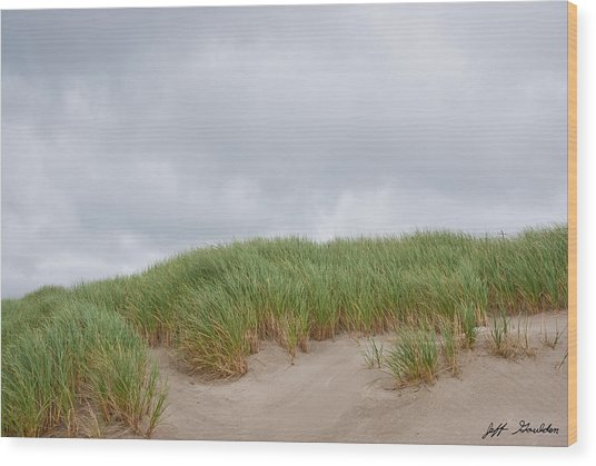 Sand Dunes And Grass Wood Print