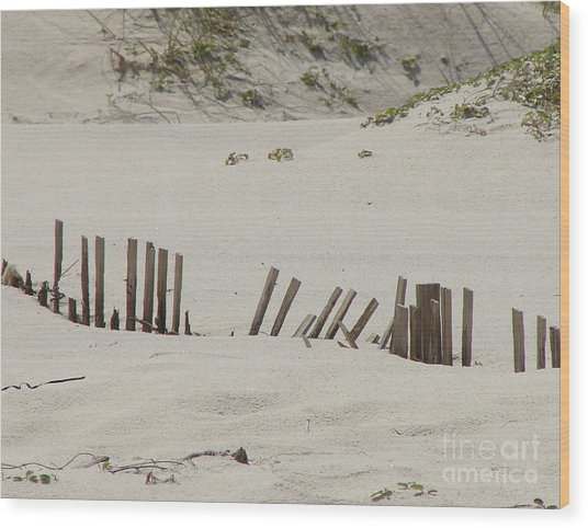 Sand Dunes At Gulf Shores Wood Print