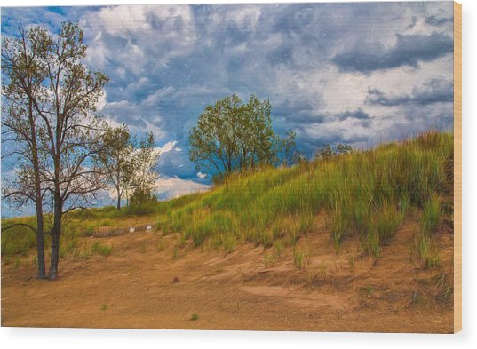 Sand Dunes At Indian Dunes National Lakeshore Wood Print