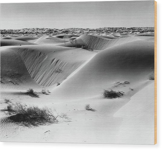 Sand Dunes Off Into Horizon Scattered Wood Print