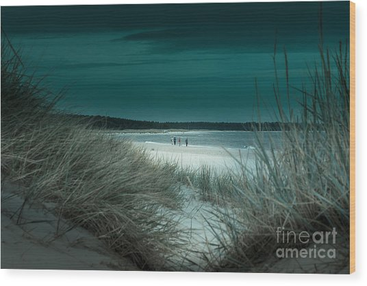 Sand Dunes On The Baltic Coast Of Oland At Boda Sand Sweden Wood Print