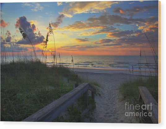 Sand Dunes On The Seashore At Sunrise - Carolina Beach Nc Wood Print