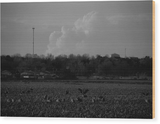 Sand Hill Cranes With Nebraska Thunderstorm Wood Print