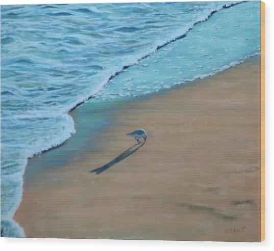 Sand Piper Wood Print